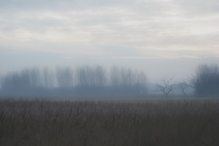 Snape Dawn - Unmounted (18x12in) - Image 0