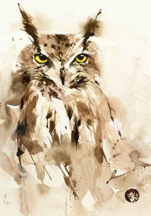 owl067 -