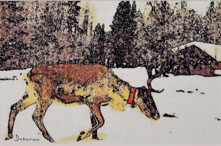 Reindeer In Red Collar - Image 0