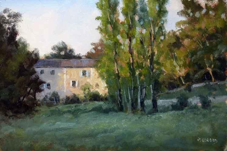 Mas Provençal -