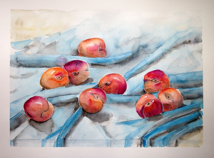One of a kind original watercolor artwork Still life with apricots on a blue towel - Image 0