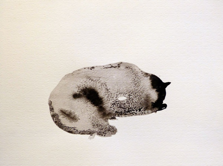 The Sleeping Cat, ink drawing 29x42 cm - Image 0