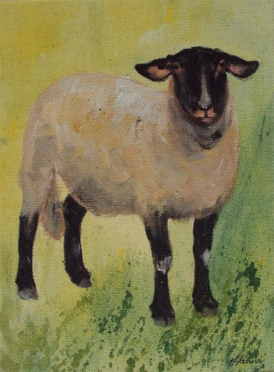 Lone Sheep - Image 0