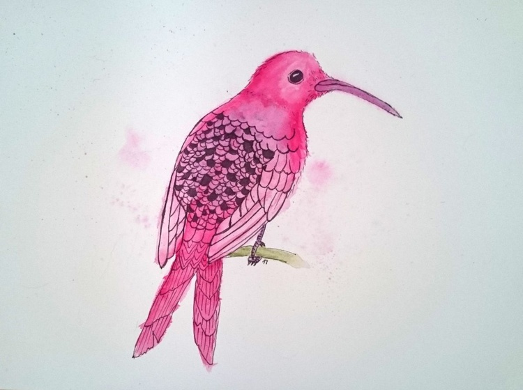 Motionless Magenta Hummingbird - Image 0