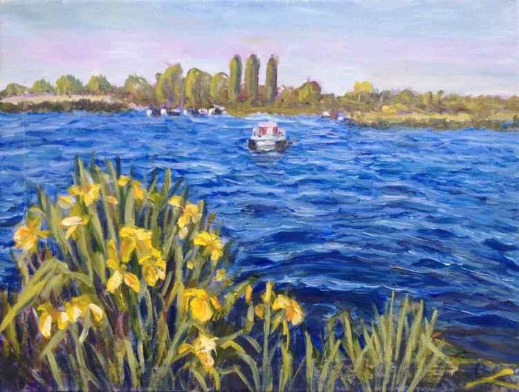 Landscape with irises -