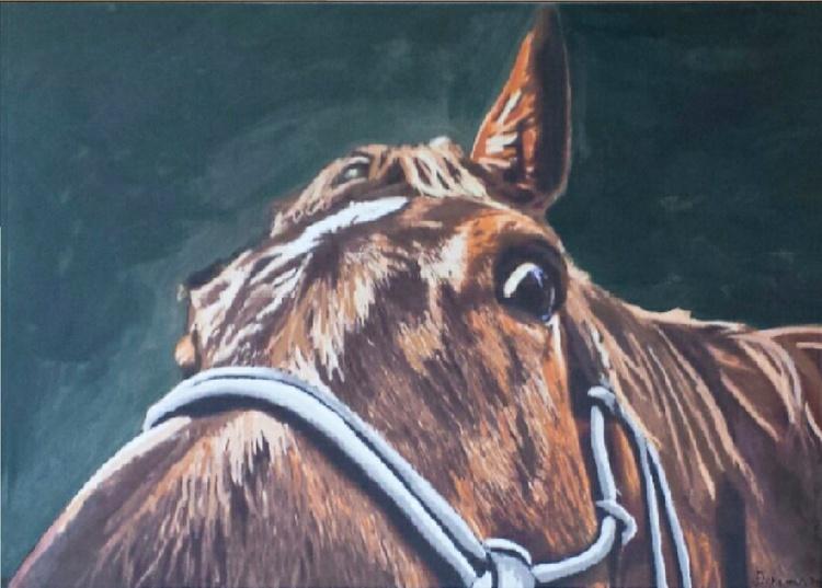 A Little Horse - Image 0