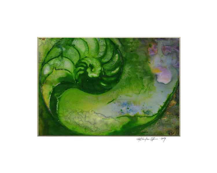 Sea Shell Watercolor Painting, Ocean - Nautilus Shell No. 936 -