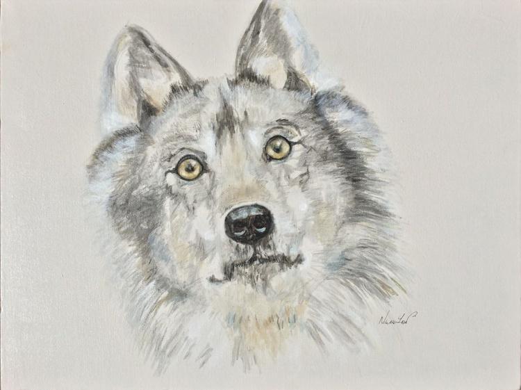 Blue Moon Wolf - Image 0