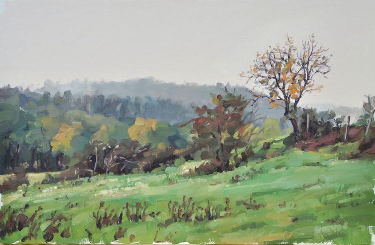 October 07, St Vincent, misty morning - Image 0