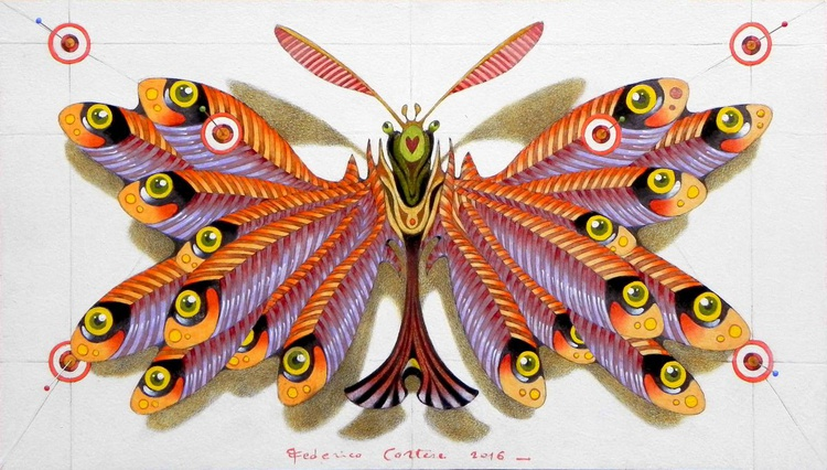 anchovies butterfly - Image 0