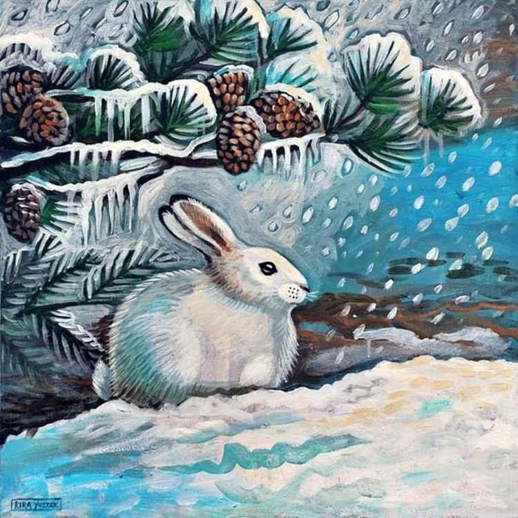 Snow Bunny -