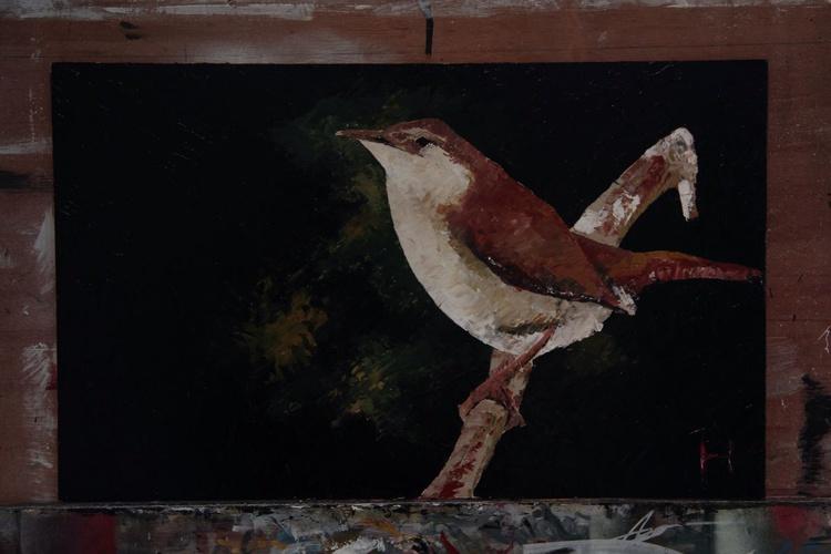 Wren 1 - Image 0