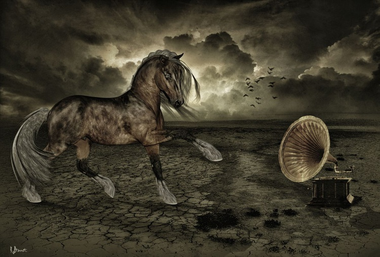 Minuet for a Horse - Limited Edition of 10 - Image 0