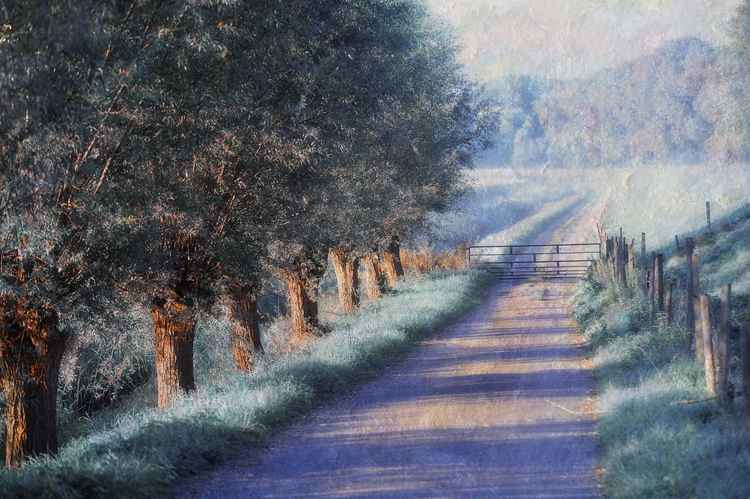 By the Road of Your Dream. Monet Style (Ltd Edition of only 25 Fine Art Giclee Prints from an original photograph)