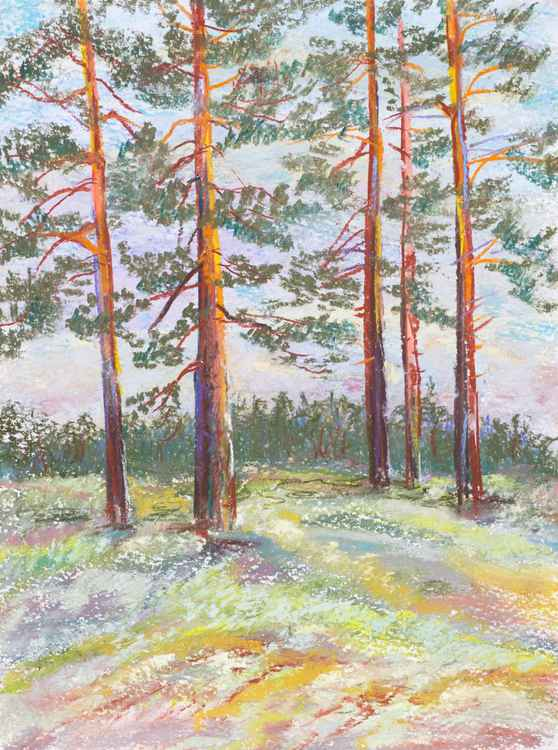 Finnish landscape -