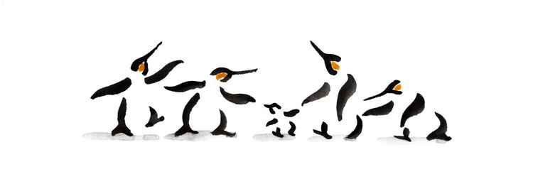 Four penguins and a chick 1030A -