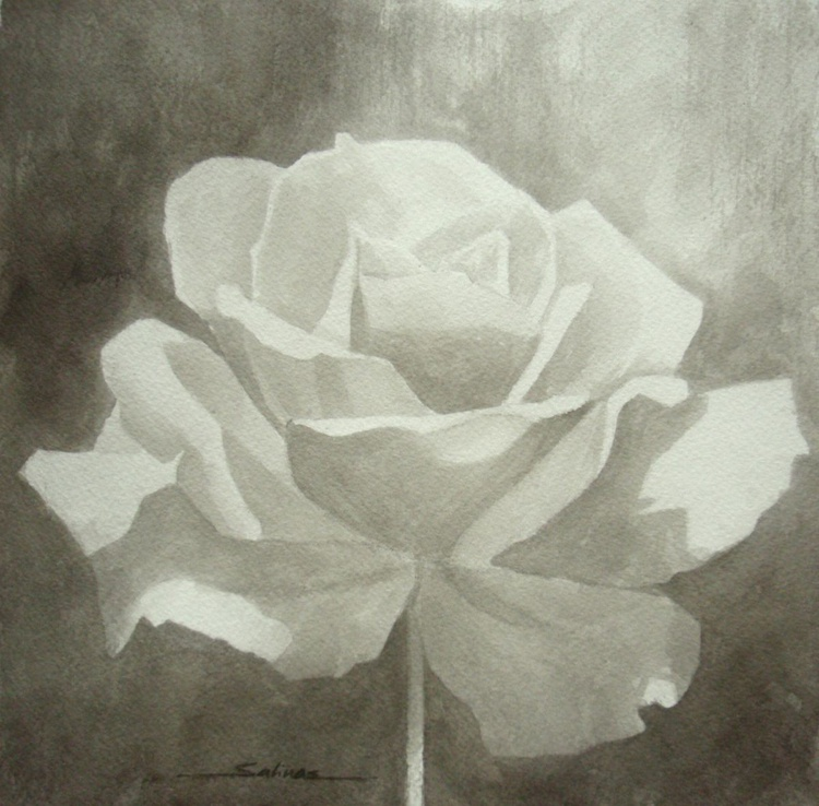 Black & White Rose - Image 0