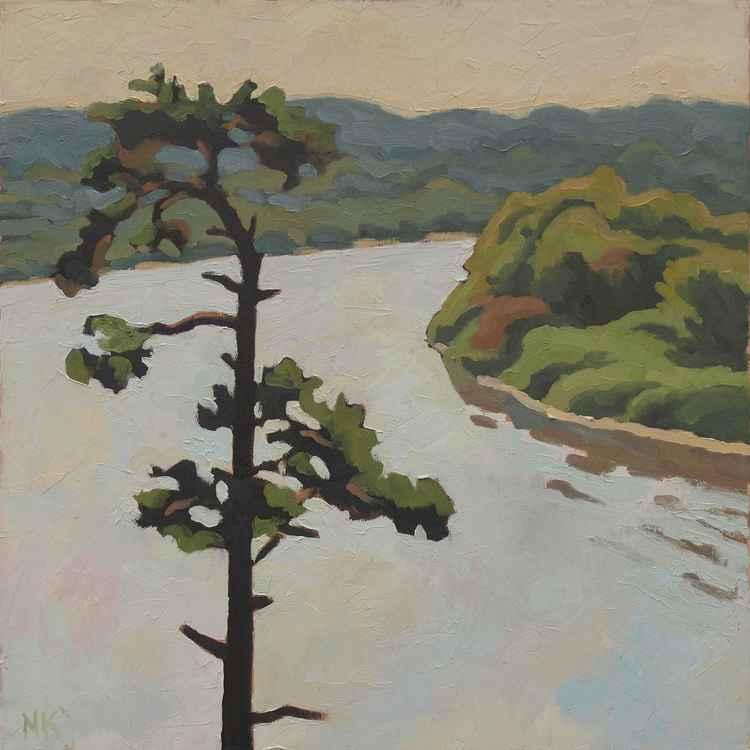 single pine above the Memel river