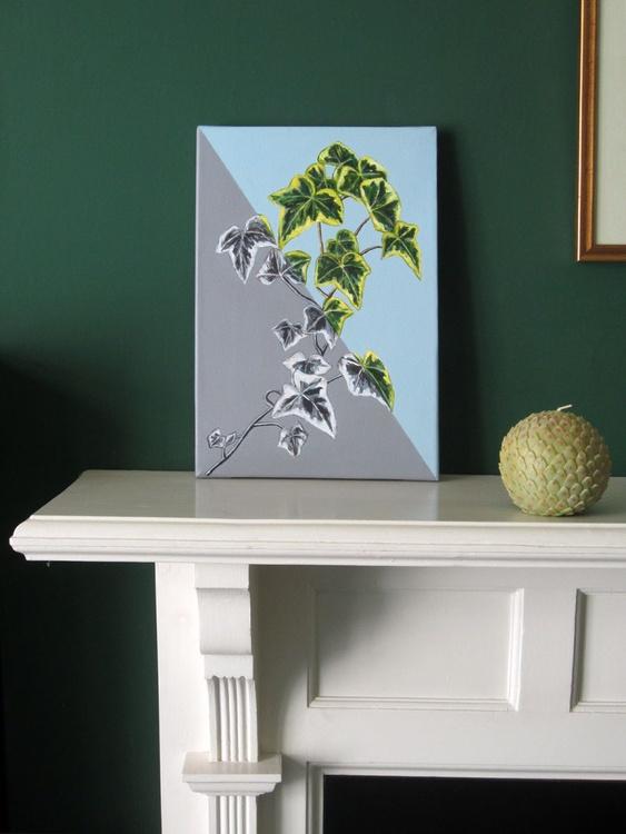 Ivy Ivy - Image 0