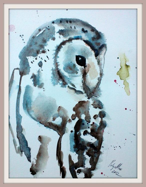 Bird #25 ( Barn Owl) - Image 0