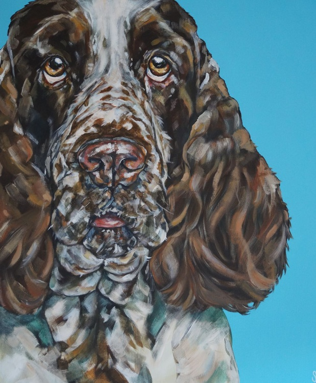 It's a dog's life ... (Dog Portrait) - Image 0
