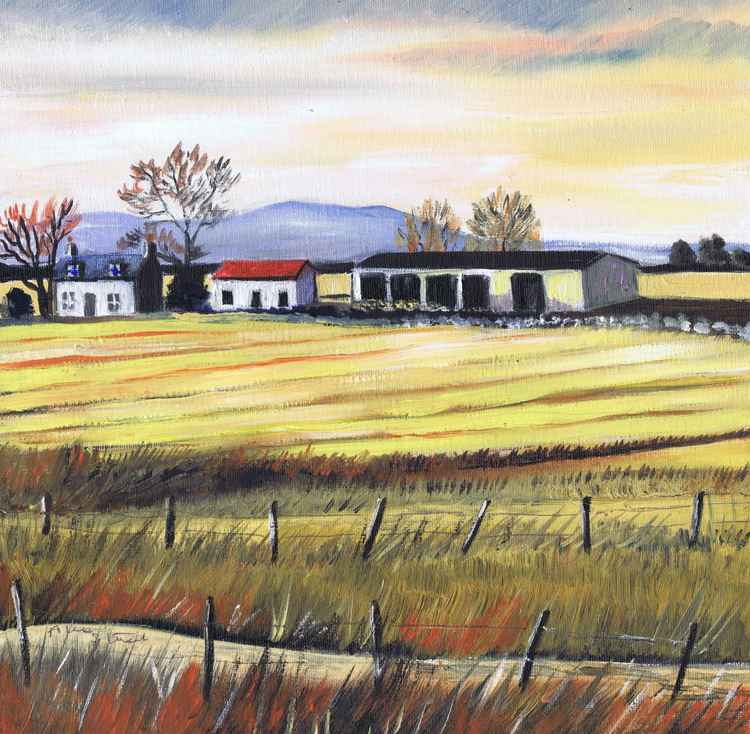 Cairnie Farm -
