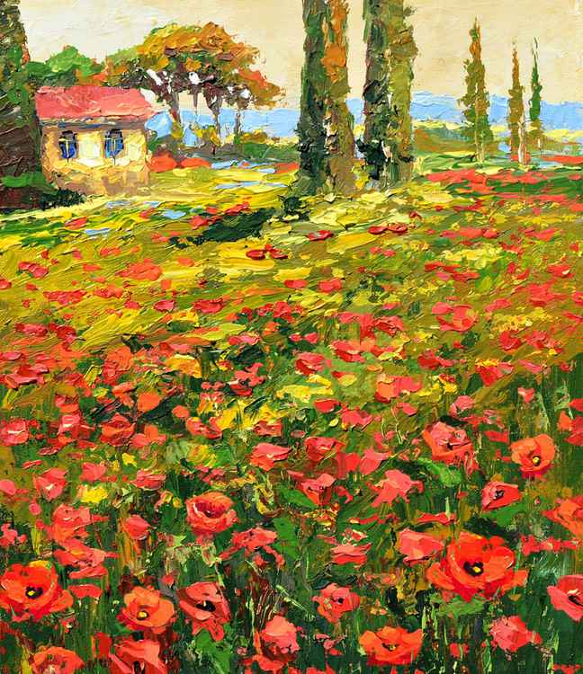 Poppies near the village - Oil acr. Painting On Canvas by Dmitry Spiros. Size: 38cm x 44cm (2015)