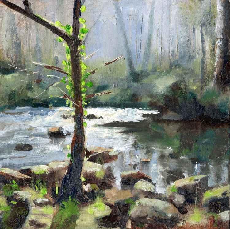 River Llugwy Betws-y-Coed -