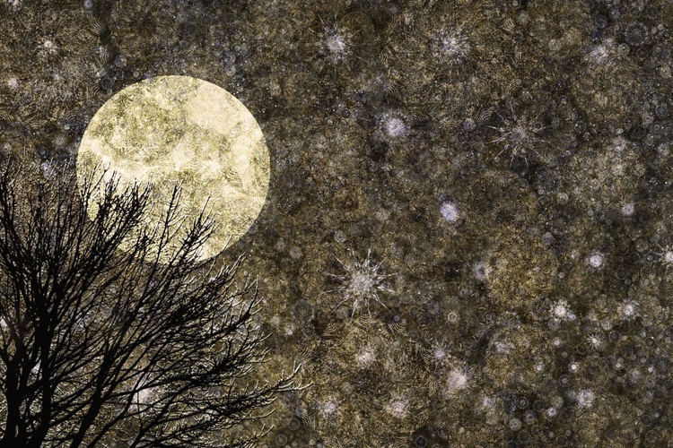 Moon Glow (Ltd Edition of only 20 Fine Art Giclee Prints from original artwork.) - Image 0
