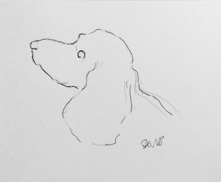 Spaniel Portrait 1 - Image 0
