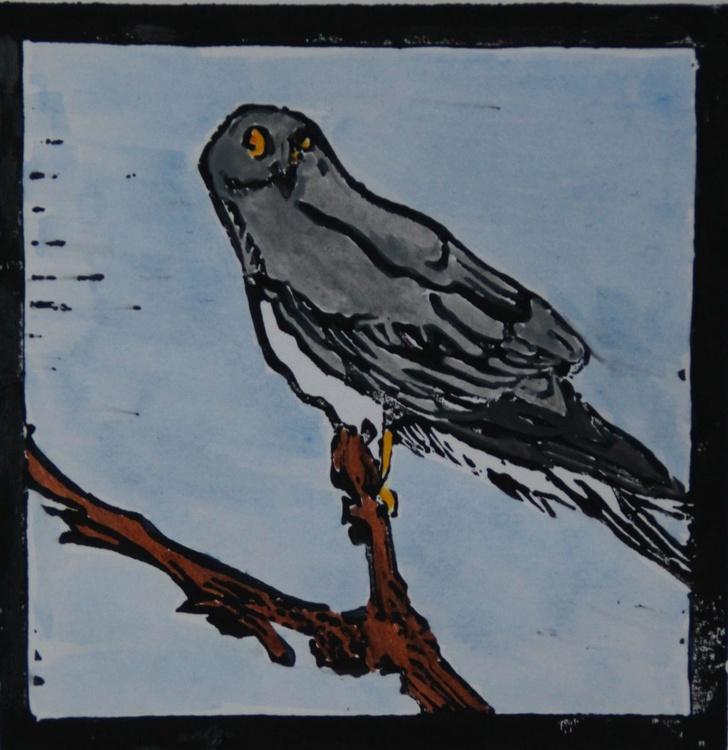 Hen Harrier lino print - Image 0