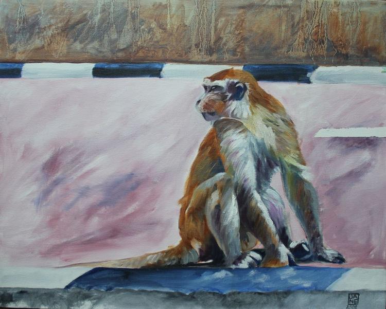 Supasave Monkey, Carpark Brunei - Image 0