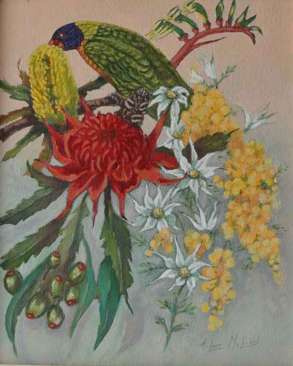 Lorikeet and wildflowers