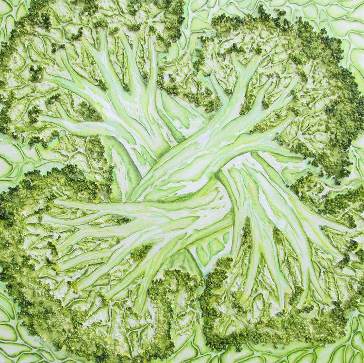 Broccoli - Image 0
