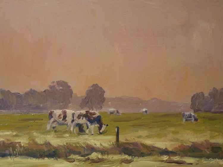 Udenhout Fog Cows
