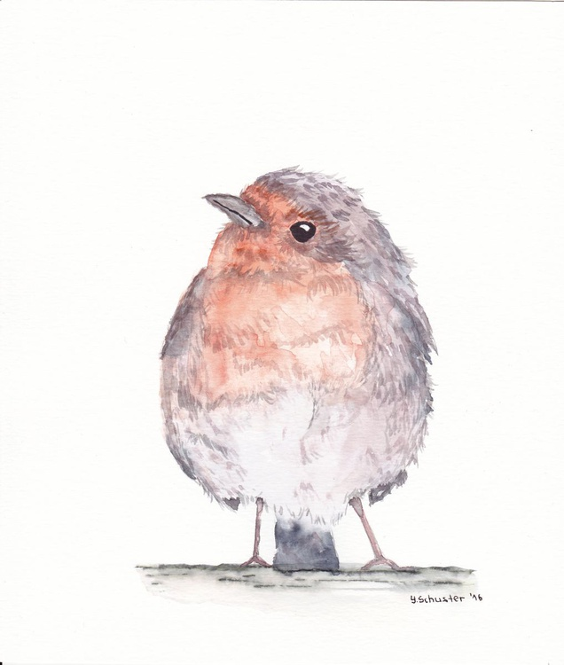 Watercolour birds portraits series. Robin Birds. Maximilian - Image 0