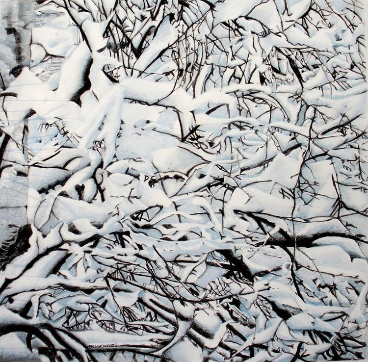 SNOWY BRANCHES - Image 0