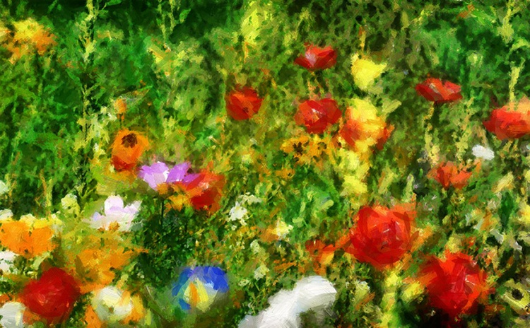Field of flowers no 4 - Image 0