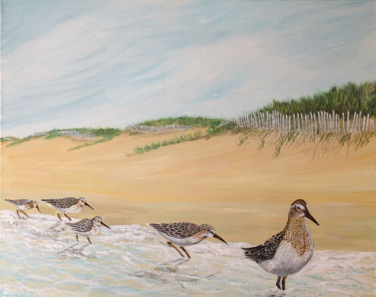 """""""Sand Piper Parade"""" - (REDUCED PRICE) - Image 0"""