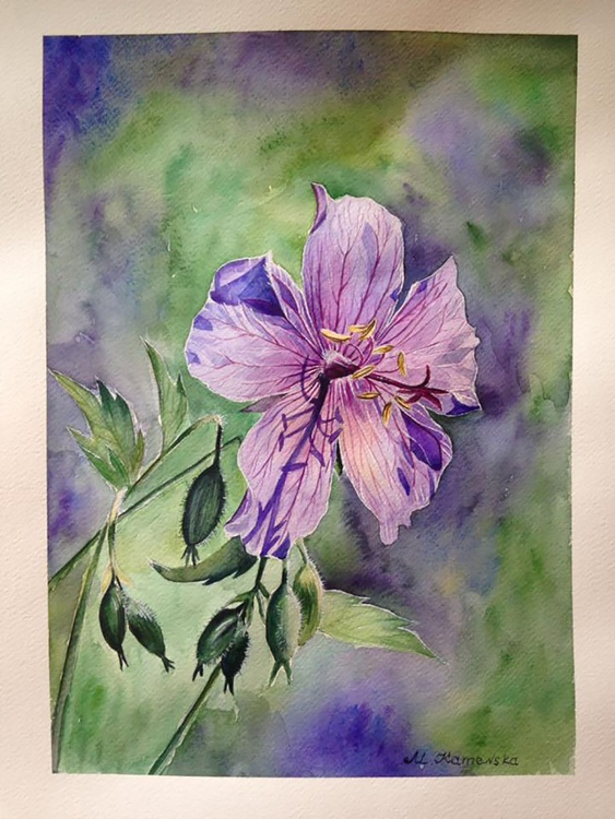 One of a kind original watercolor artwork Summer violet flower in the field - Image 0