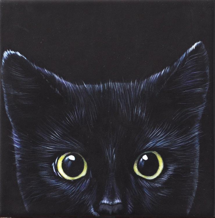 Black kitty kat - yellow eyes - Image 0