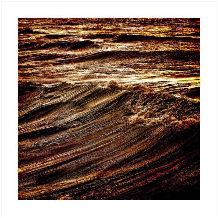 Wild Waves -