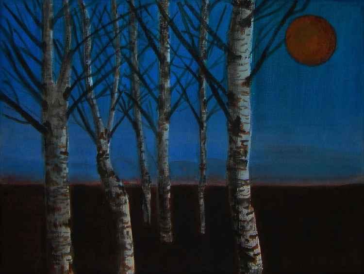 Nocturn of winter II