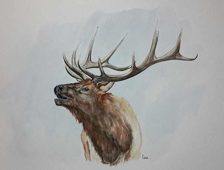Bull Elk - Image 0