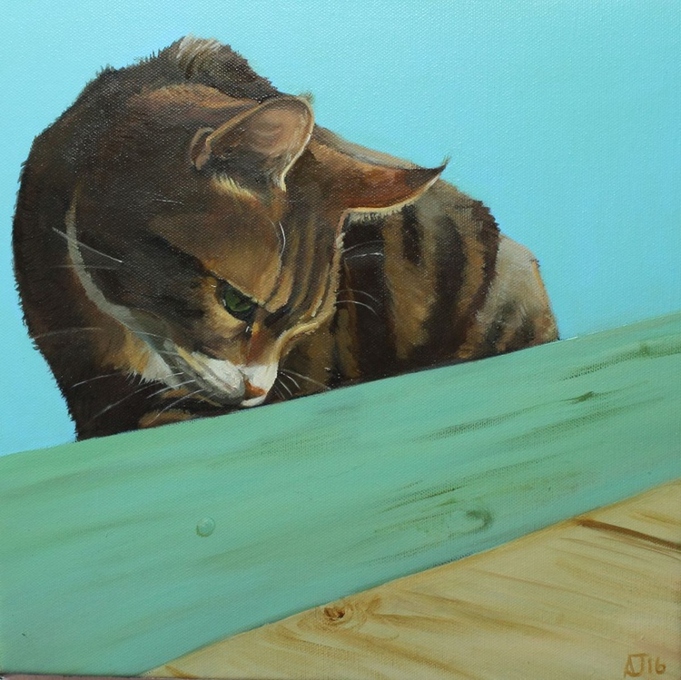 Cat Crouched on the Shed - Image 0