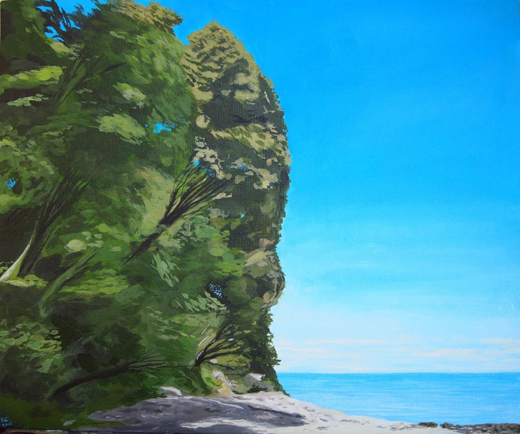 White Sand and Trees - Image 0