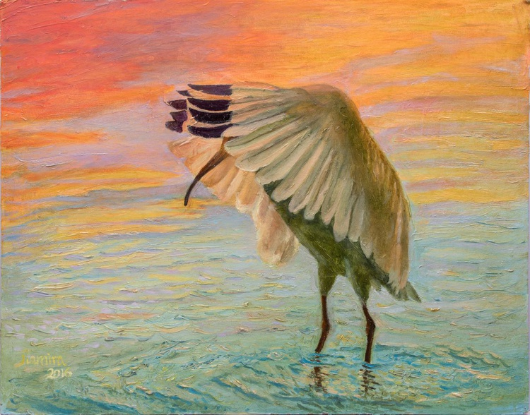 African heron №1 - Image 0