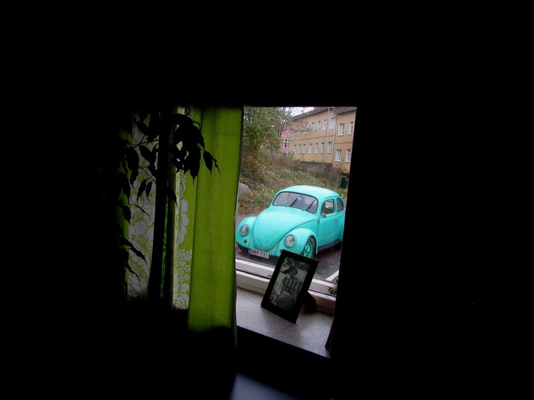 Beetle Through a Window - Image 0