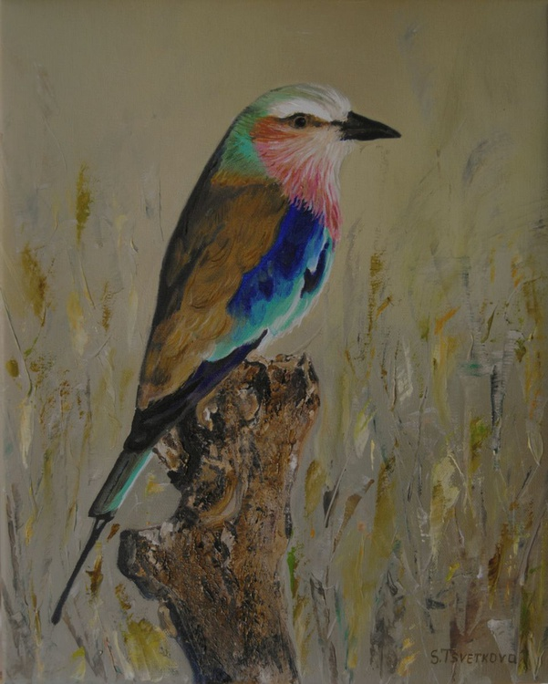 Lilac-breasted Roller oil painting - Image 0