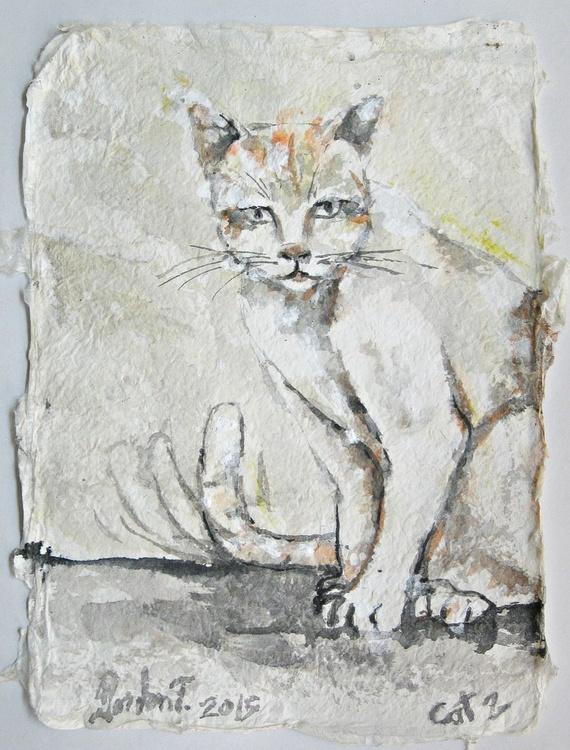 Cat2 - Image 0